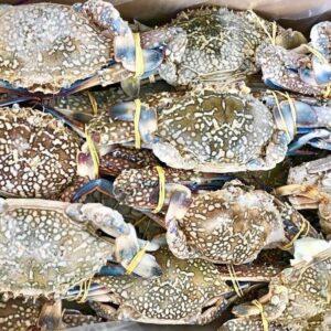 Blue Crab 2 300x300 - SEAFOOD