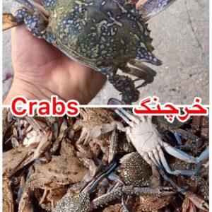 Crab 3 300x300 - SEAFOOD