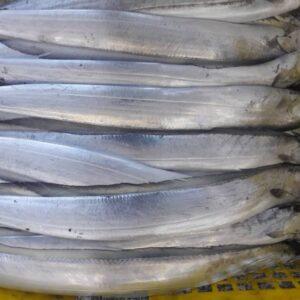 Ribbon Fish 5 300x300 - SEAFOOD