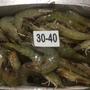 Shrimp 3 300x300 - SEAFOOD