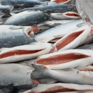 coho salmon 02 300x300 - SEAFOOD